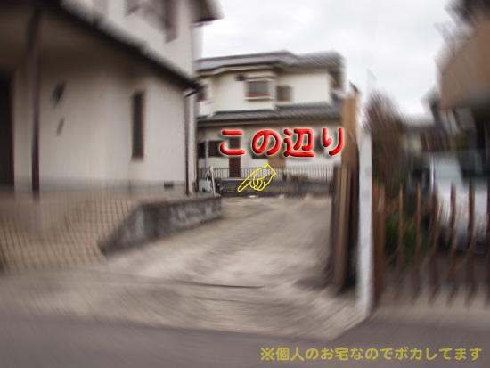 asoko7.jpg