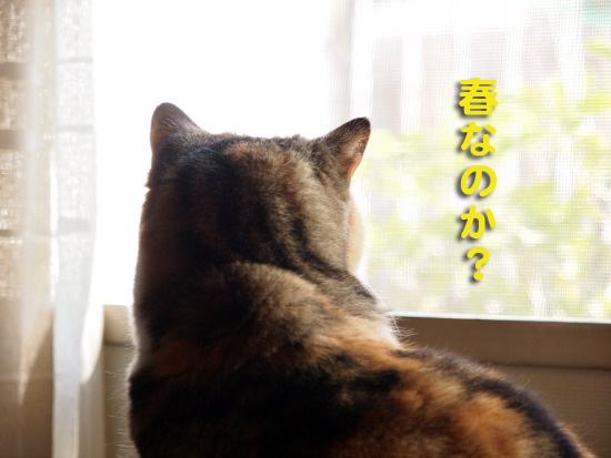 keichitsu1.jpg