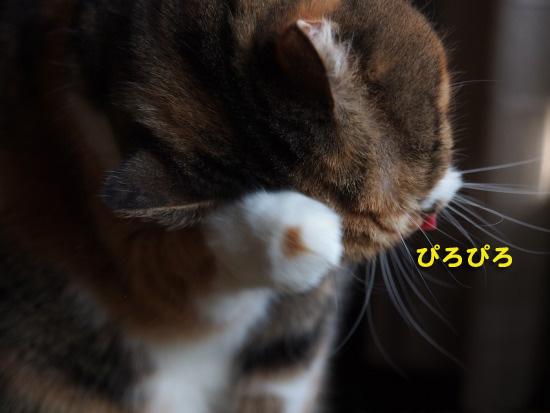 keichitsu4.jpg