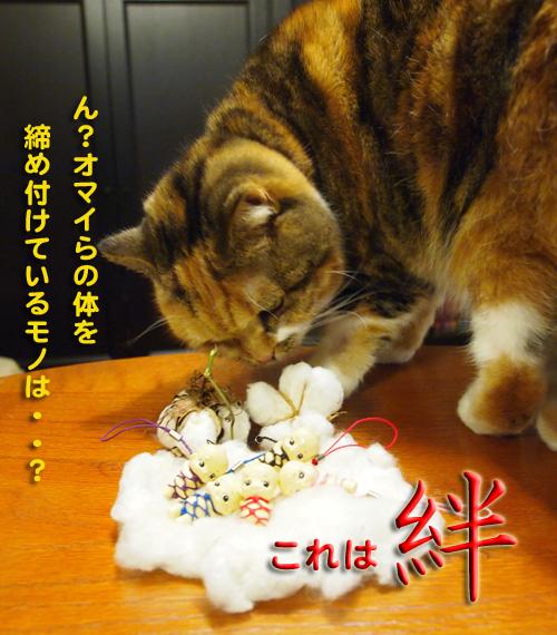 kizuna3.jpg